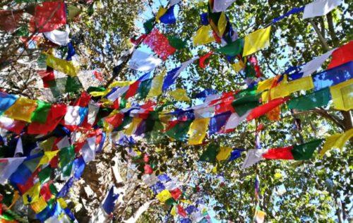 Banderas de colores plegarias al viento en las montañas de katmandú